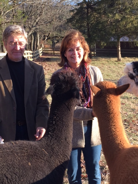 Dave and Teri Grembi with Alpaca in the farm